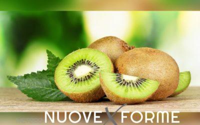 Sapevi che l'Italia è il maggiore produttore mondiale di kiwi?
